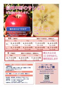 りんご詰め合わせチラシ(サンふじ)